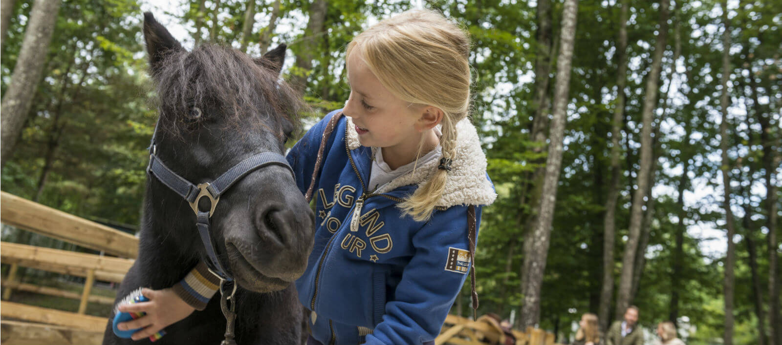 Pony vakantie Het Meerdal & Erperheide Center Parcs