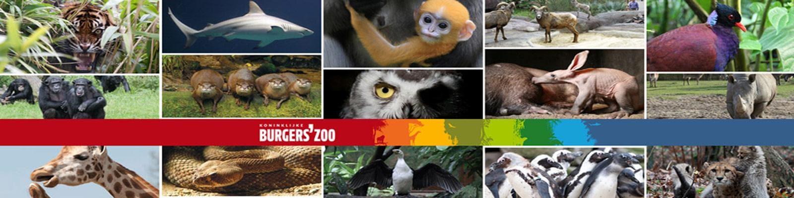 Burgers Zoo dierentuin