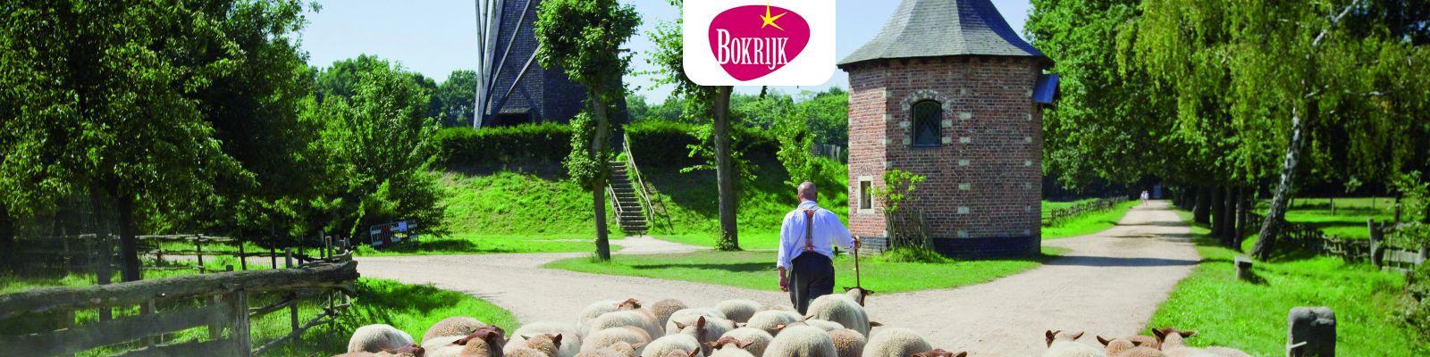 Bokrijk herder