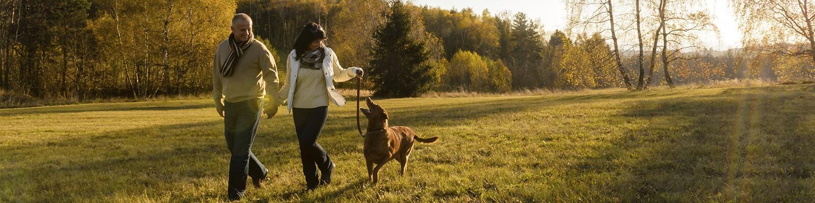 Op vakantie bij Center Parcs met je huisdier of hond