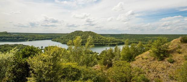 Terhills Resort liegt am Rand eines wunderschönen Naturschutzgebietes - Center Parcs