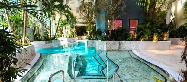 Wellness-vakantie in Duitsland - lekker genieten in je luxe vakantiehuis met sauna en jacuzzi en de spa