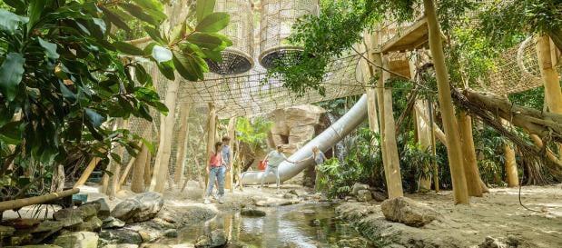 Erneuerungen in Het Heijderbos