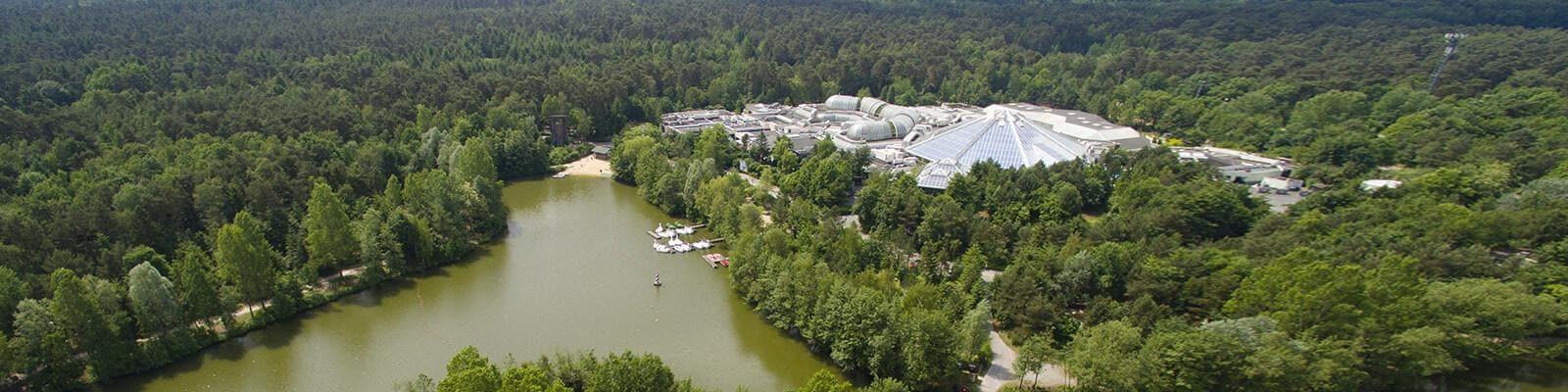 Bispinger Heide