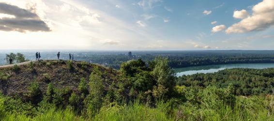 Geniet van de rijke natuur in en om onze parken, in de mooiste regio's dichtbij
