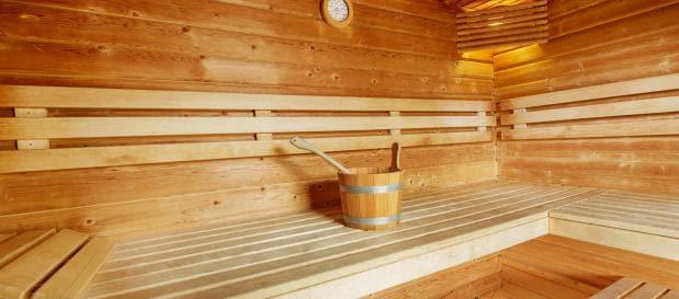 ferienhaus deutschland sauna