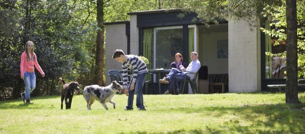 Ferienhaus mit Hund buchen