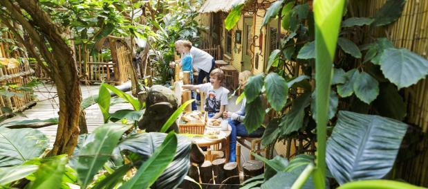Jungle Cabana Paket