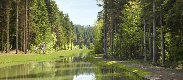 Luxemburg: Ferienwohnung Moselle