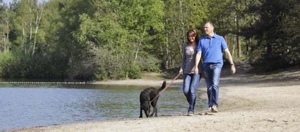 Nordsee-Urlaub mit Hund buchen