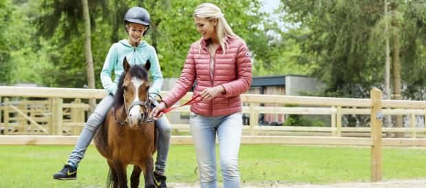 Pony Urlaub Ferienhaus