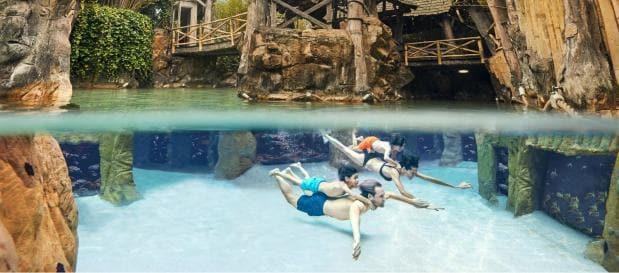 Pony-Urlaub Unterwasserwelt