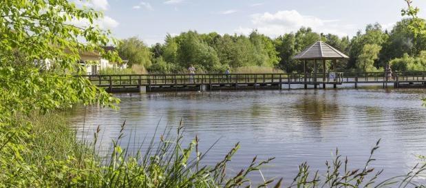 Toverland bei Limburgse Peel