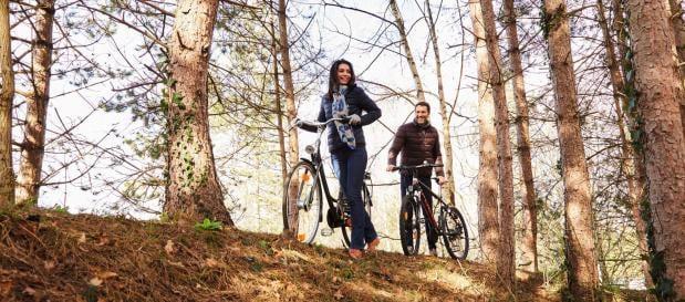 Fahrrad Herbst