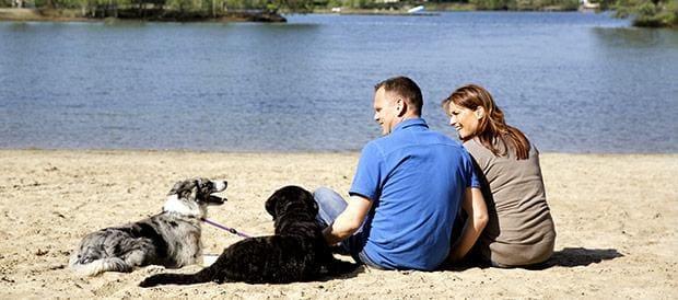 Ferien mit Hund in de Kempervennen