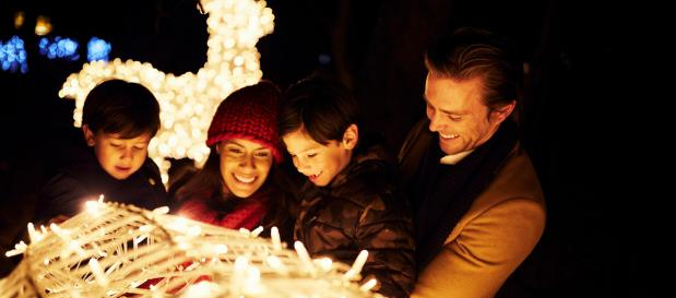 Celebrate during winter holidays