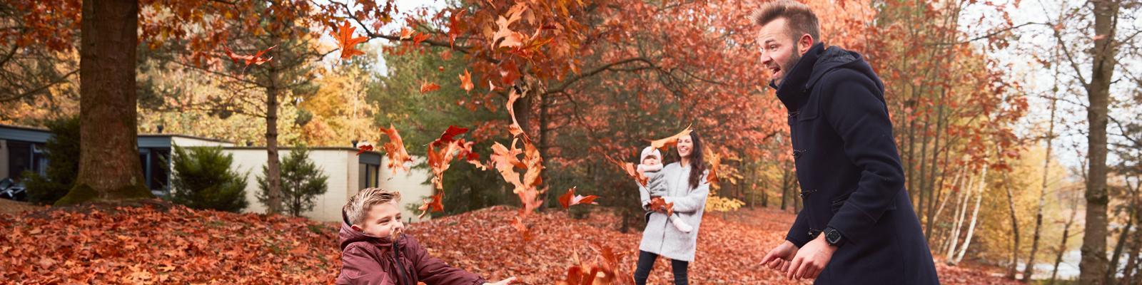 Najaar familie bladeren