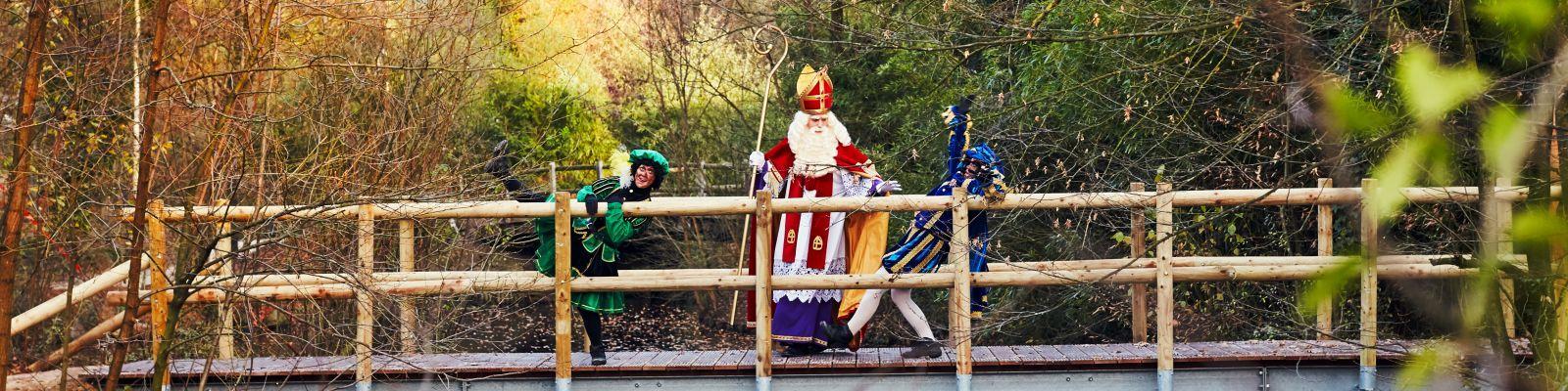 Sinterklaas brug