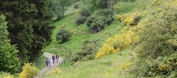 Lekker wandelen tijdens je vakantie in de natuur rondom Park Hochsauerland in Duitsland